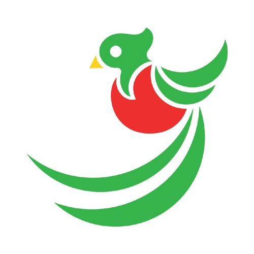 Next Generation Guatemala's avatar