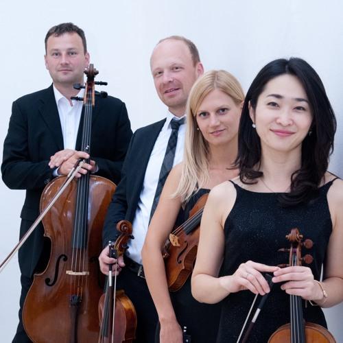 Leopold Mozart Quartett's avatar