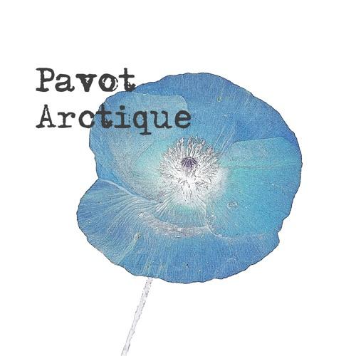 Pavot Arctique's avatar