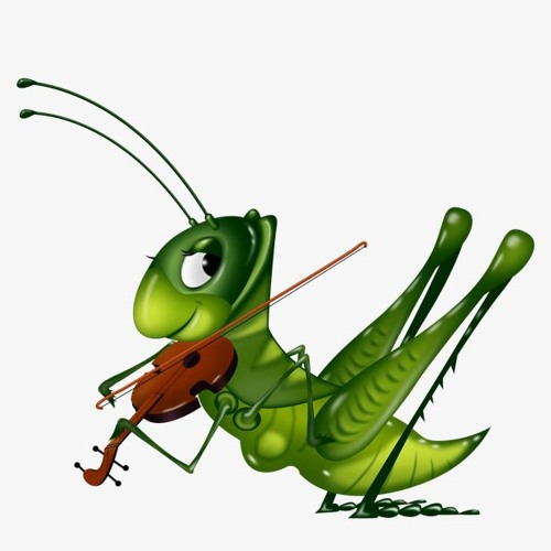 The Grasshopper 💚's avatar