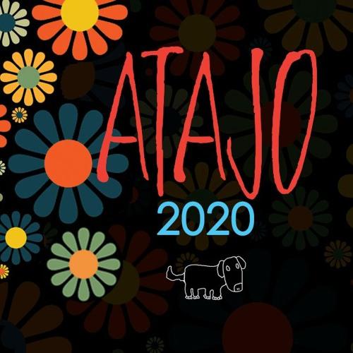 Atajo Bolivia's avatar