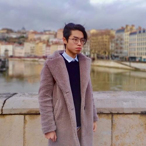Laurent Vang's avatar