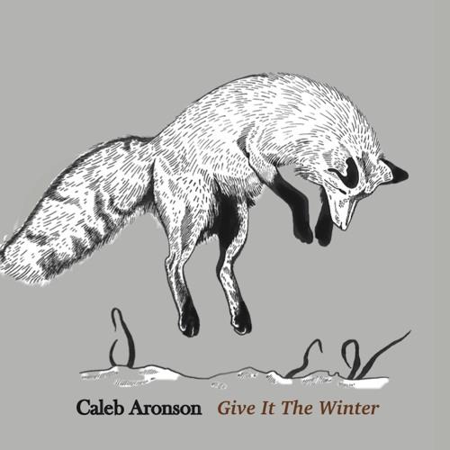 Caleb Aronson's avatar