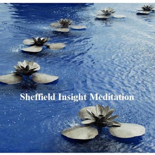 Sheffield Insight Meditation's avatar