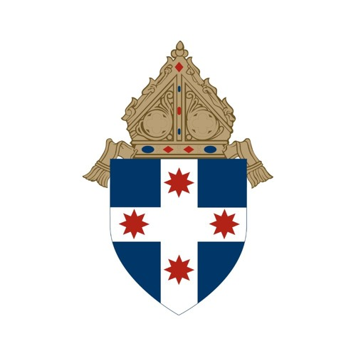 Archdiocese of Sydney's avatar