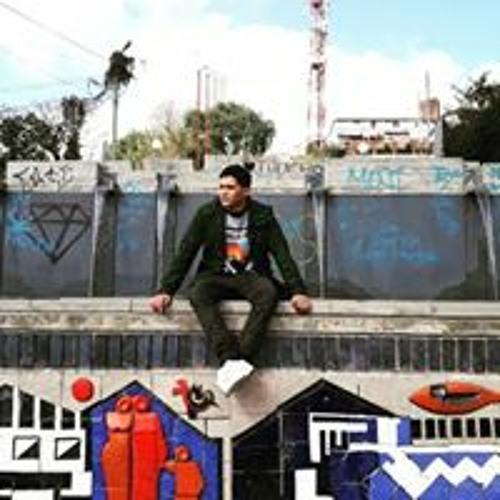 Lucas Flores's avatar