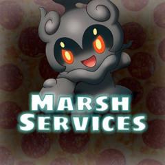 Marsh Services