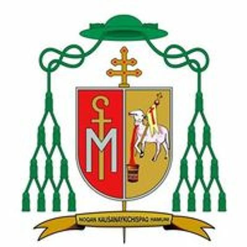 Arzobispado del Cusco's avatar
