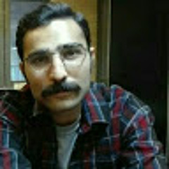 Ehsan Lotfi