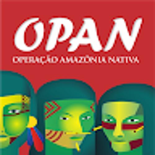 Operação Amazônia Nativa's avatar