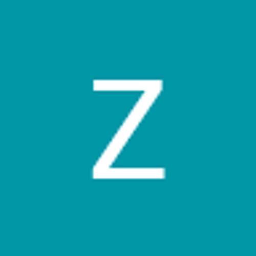 Zarko Dinev's avatar