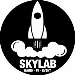 Henk and Ingrids Skylab