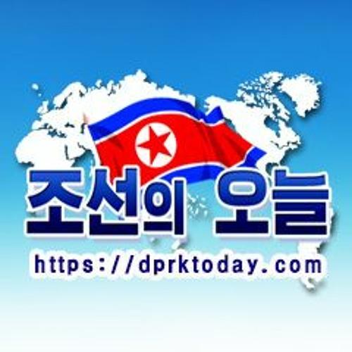 조선의 오늘's avatar
