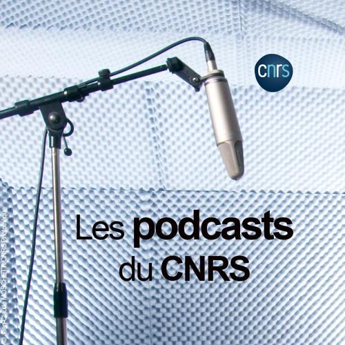 CNRS's avatar