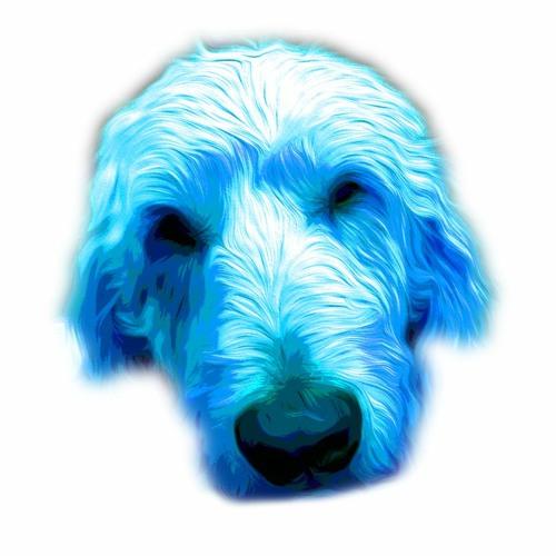 LeoTheDog's avatar