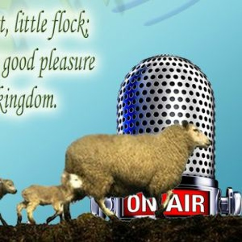 Little Flock Radio's avatar