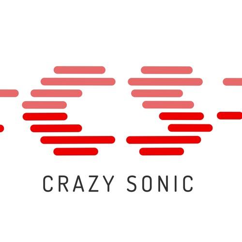 Crazy Sonic's avatar