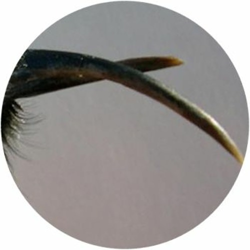 agorgerompue's avatar