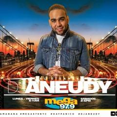 DJ Aneudy (El Gigante)