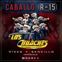 Quiero Charlar Con La Muerte- Los Huaches de Tierra Caliente en VIVO!!