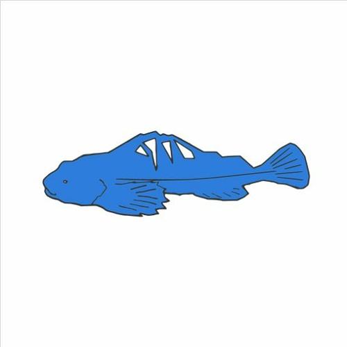 Blue Sculpin Media's avatar