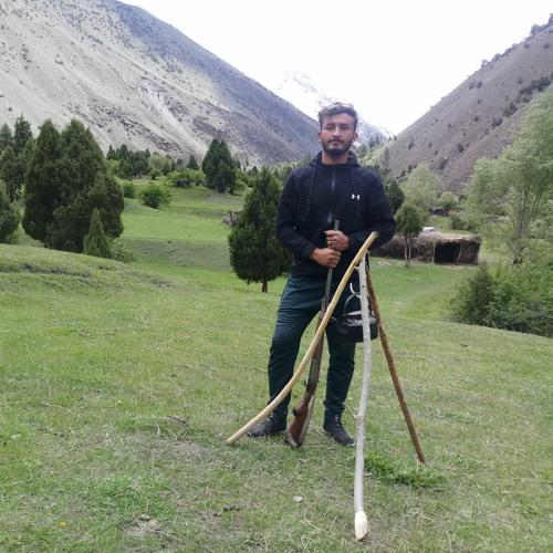 Amir Nizam Nizami