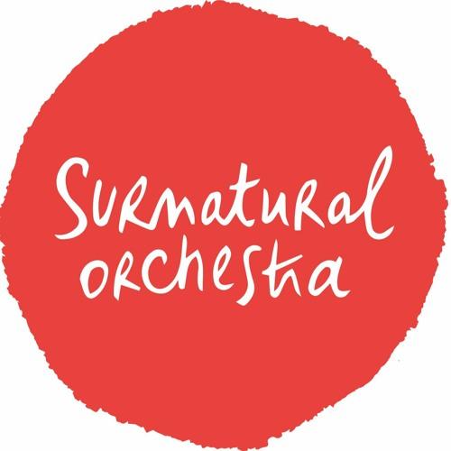 Surnatural Orchestra's avatar