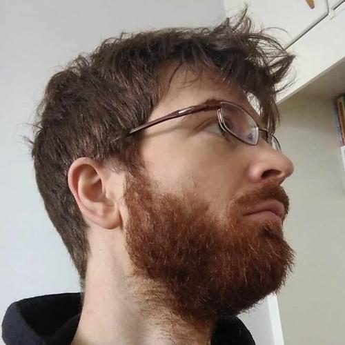 Sebastian Dumitrescu's avatar
