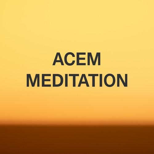 Acem Audio's avatar