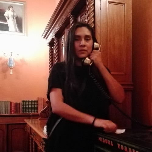 Luisa Demont's avatar