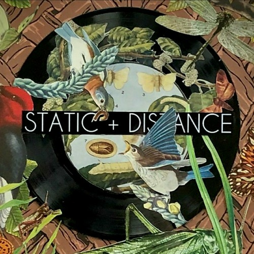 Static + Distance's avatar
