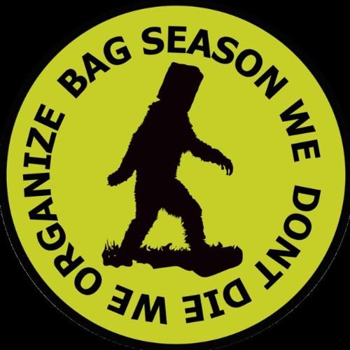 Bag Season Records's avatar