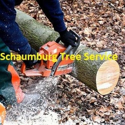 Schaumburg Tree Service's avatar