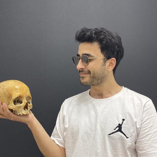 Lutfu Sarisoy's avatar