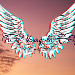 Too Young To Fly