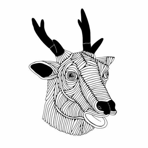AcidStag's avatar