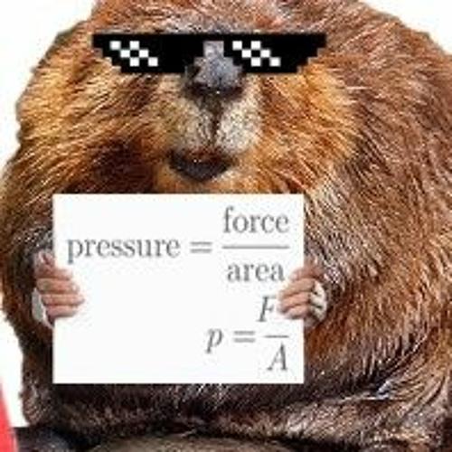 LTG Beaver's avatar