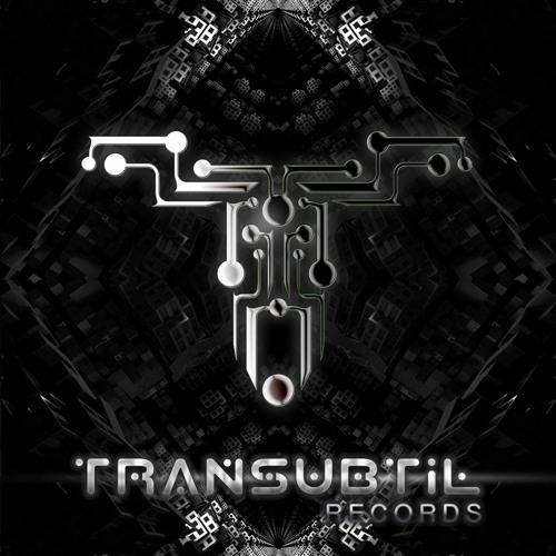 Transubtil Records's avatar
