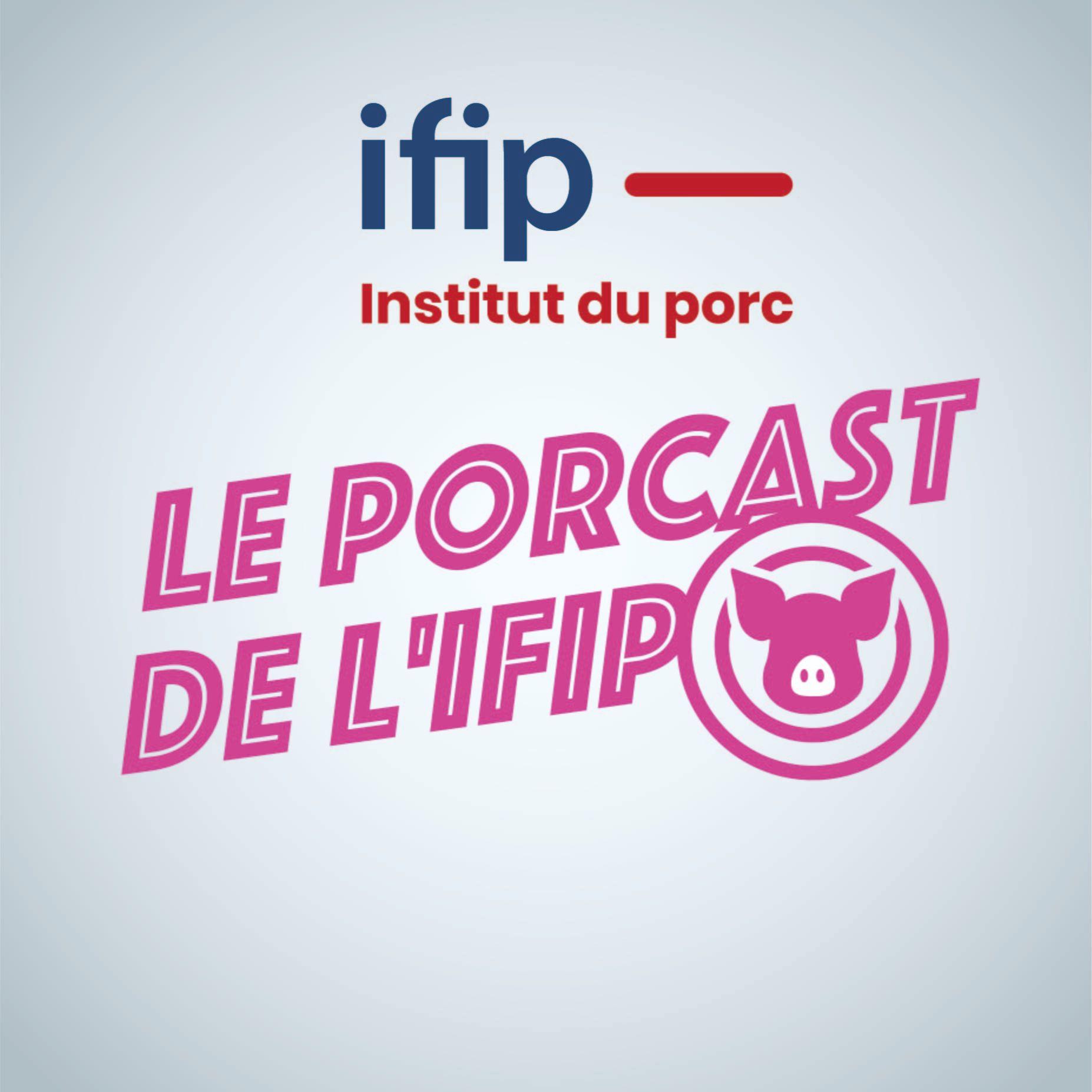 PorCast by ifip