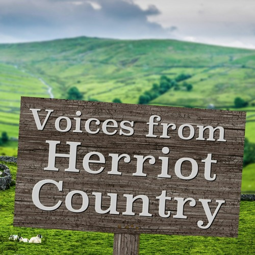 Voices from Herriot Country's avatar