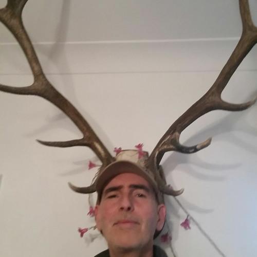 Nick Bold's avatar