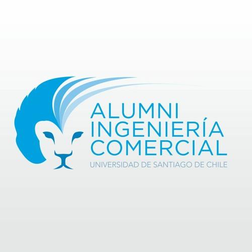 Alumni Ingeniería Comercial USACH's avatar