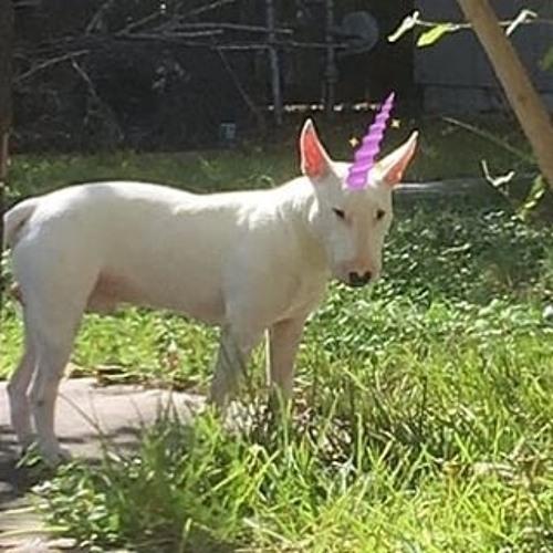 bbyaang's avatar