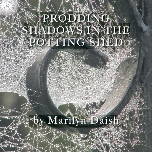 Prodding Shadows in the Potting Shed's avatar