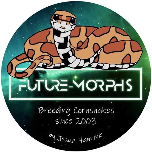 Future-Morphs's avatar