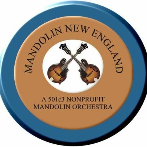 Mandolin New England, Inc's avatar