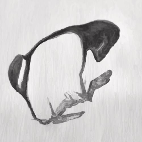 somDisko's avatar