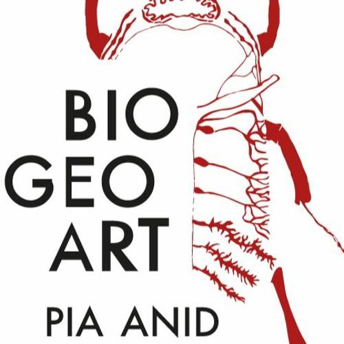 BioGeoArt Inmersión Sonora's avatar
