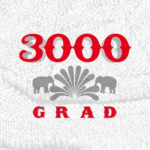 3000Grad / Acker Records's avatar