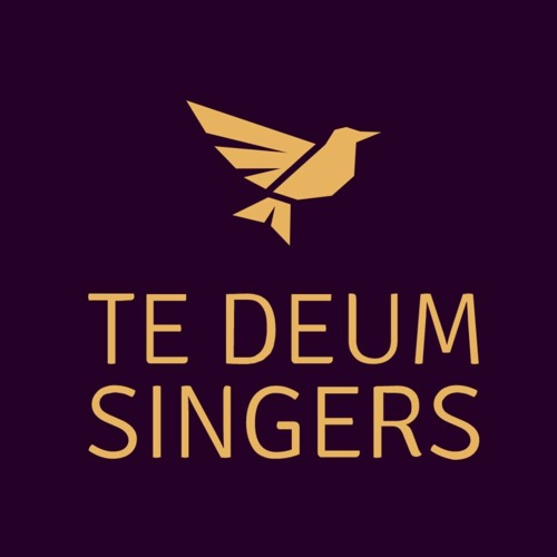 Te Deum Singers's avatar